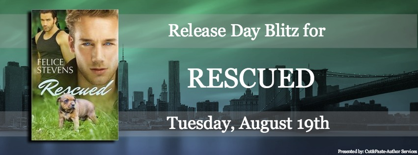 Release Day Banner.jpg